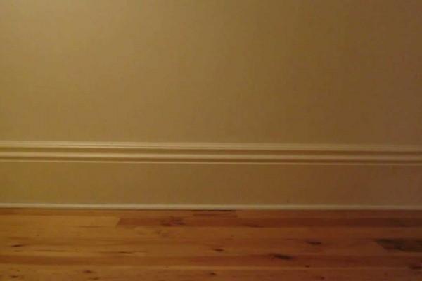 猫好き必見!動画再生から4秒後に「萌え~」で可愛すぎる展開が…!