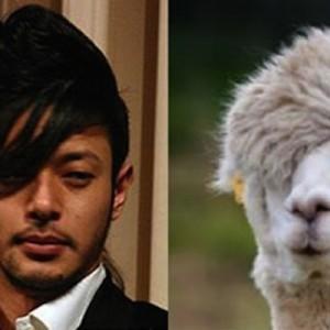 【どことなく似てる】有名人にそっくりだった動物(7選+1)