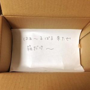 【は~るばる来たぜ箱だけ~】届いた荷物を見てビックリ(8選)