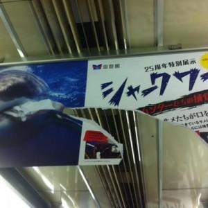 【遊び心が凄い】電車の中で発見!海遊館の中吊り広告が「秀逸!」と話題に(画像)