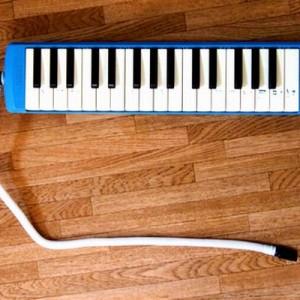 【この楽器の名前は?】みんなが使ったこの楽器!人によって呼び名が違うのはナゼ?