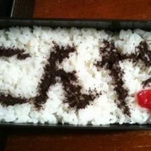 【母、痛恨のミス】栄養以外もお届けしたワイルド弁当11選