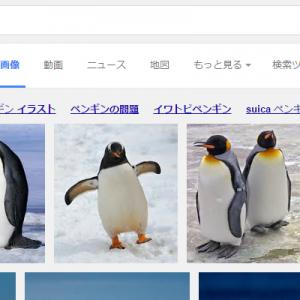 なぜキミがそこに(笑)「ペンギン」で画像検索をしたら1枚だけ違う子がいる【画像】