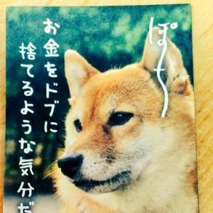 【伝えにくい本音を代弁】ぽち(犬)とたま(猫)の「ポチ袋」がおもしろすぎる10枚