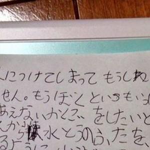 8歳の息子が大事な大事なゲームを水没!その後、任天堂に宛てた手紙が健気すぎて…