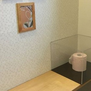 旦那「アクリルケース買ったからトイレに何か飾るわー」ある種の才能を発揮した人たち9選