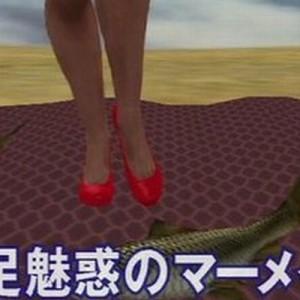 みんなやっぱり思ってた!(笑)T.M.Revolutionの曲、「生足魅惑のマーメイド」の正体