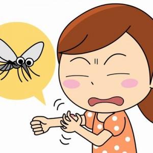 【良いこと聞いた】ほんのちょっとしたことだった!「蚊を高確率で退治するコツ」が目から鱗