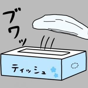 【イライラ解消】複数枚取れてしまう!箱ティッシュを開けた時に最初の一枚だけを取る方法
