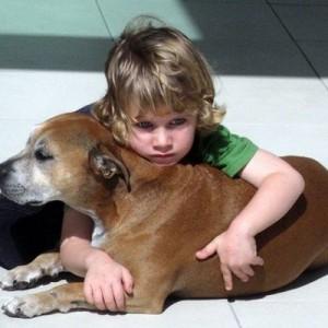 「どうして犬の寿命は人間よりも短いの?」世界が納得した6歳少年の驚きの『答え』