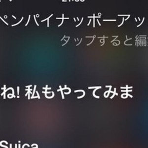 流行に乗りやがった!Siriにピコ太郎の「ペンパイナッポーアッポーペン」を質問したら(笑)