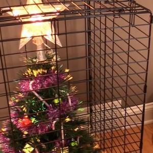 飼い主たちは考えた!(笑)ペットからクリスマスツリーを守るための「苦肉の策」9枚