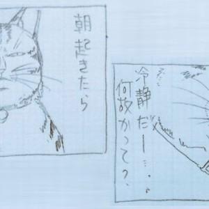 現実は厳しい、だけど笑っちゃう!「もしも猫と人間が入れ替わったら…(笑)」3枚