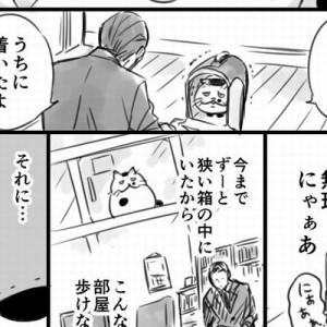 【待望の第二話】「売れ残り」の成猫とオジサマの出会いを描いた漫画!またしても…涙!