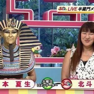 【元気も出る】イライラが治まらないとき、岡本夏生のコスプレを見ると落ち着きますよ11枚