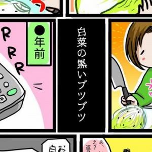 ずっと気になってた!「白菜の黒いブツブツ」について解説した漫画がとても為になる…スッキリ!