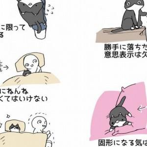 グッとくる…そして、噛み締める!「猫を飼うのは大変だ!でも…」(画像)