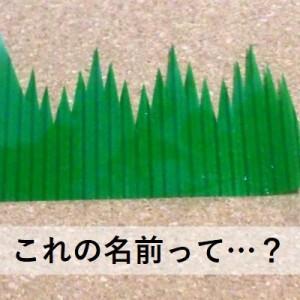 【激ムズ】知ってるようで知らない!「アレ」の名前クイズ(全10問)