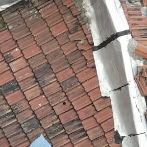 隣の家の屋根に愛犬の枕を落としてしまった結果(笑)こんなことが起きていたという写真