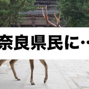 独特すぎない!?エピソードが!(笑)みんなが語る「奈良の話」が面白すぎる8選